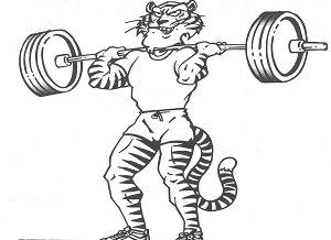 tiger clean
