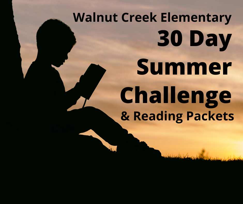ELA 30 Day Summer Challenge