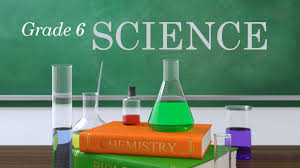 Image result for science 6