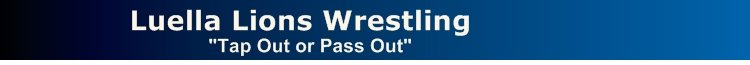 Lions Wrestling