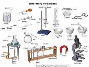 Sallas, Beth / Lab Safety