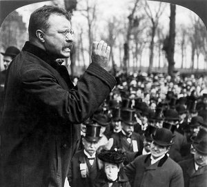Roosevelt progressivism essay
